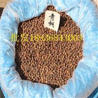 青桐种子报价 青桐种子播种方法及简介 林木种子批发