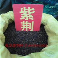 紫荆种子报价 紫荆种子播种方法 林木种子批发