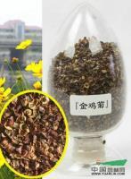 江苏金鸡菊种子信息