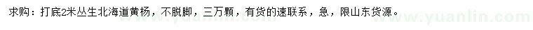 青州市紫欣雅花卉苗木专业合作社