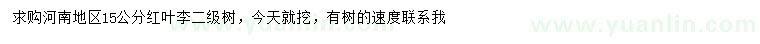葡京15公分红叶李
