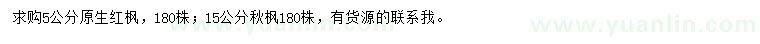 葡京5公分原生红枫、15公分秋枫