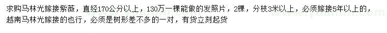 曾道人救世网直径170公分以上马林光嫁接紫薇