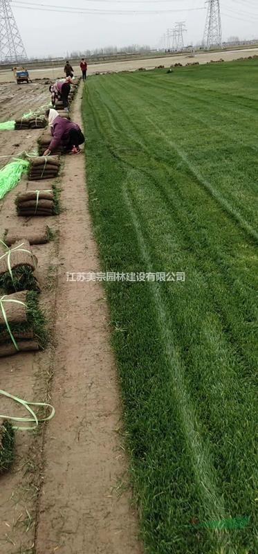 江苏美宗园林建设有限公司