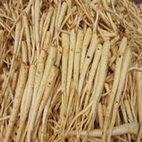 桔梗的产地,种子绿康态有,量大优惠