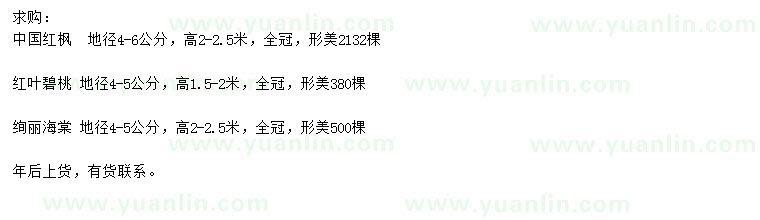 求购中国红枫、红叶碧桃、绚丽海棠