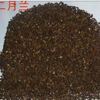 直销二月兰种子量大,沭阳县绿景苗木配送