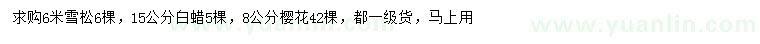 六合彩图库雪松、白蜡、樱花