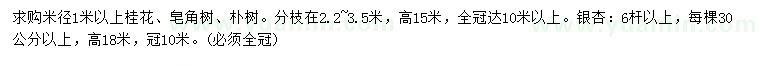 葡京桂花、皂角、朴树