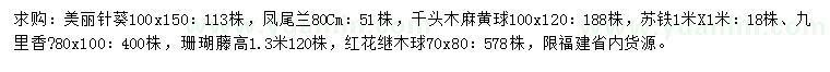六合彩图库美丽针葵、凤尾兰、千头木麻黄球等