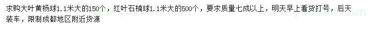 葡京1.1米大叶黄杨球、红叶石楠球