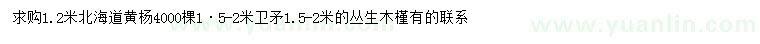 求购北海道黄杨、卫矛、丛生木槿
