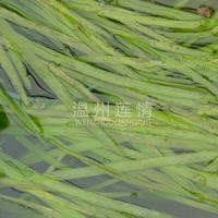 浙江温州莲情供应苦草,蓼萍草,扁草,沉水植物工程量大优惠
