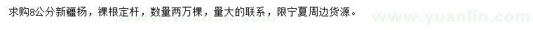 葡京8公分新疆杨