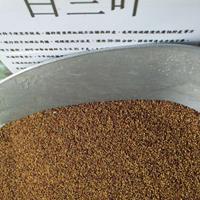 三叶草种子美国进口 白三叶 红三叶种子全国包邮