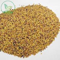 辽宁省红三叶种子价格一览表