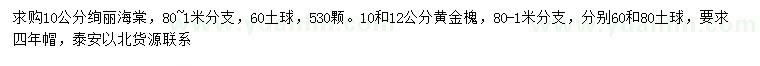 葡京10公分绚丽海棠、10、12公分黄金槐