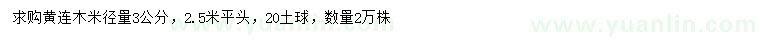 葡京米径3公分黄连木