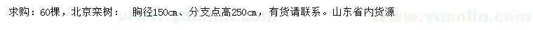 求购胸径150公分北京栾树