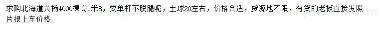求購高1.8米北海道黃楊