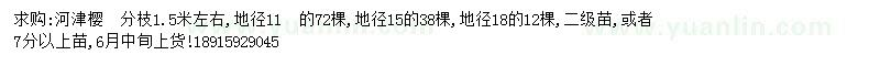 求購河津櫻10  15  18