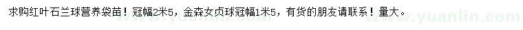 求购冠幅2.5米红叶石楠球、冠幅1.5米金森女贞球