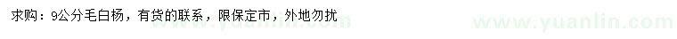 国产亚洲Av在线9公分毛白杨