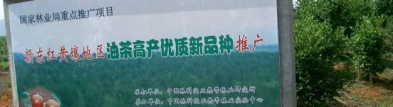 撫州市東鄉區生態園林種苗有限公司