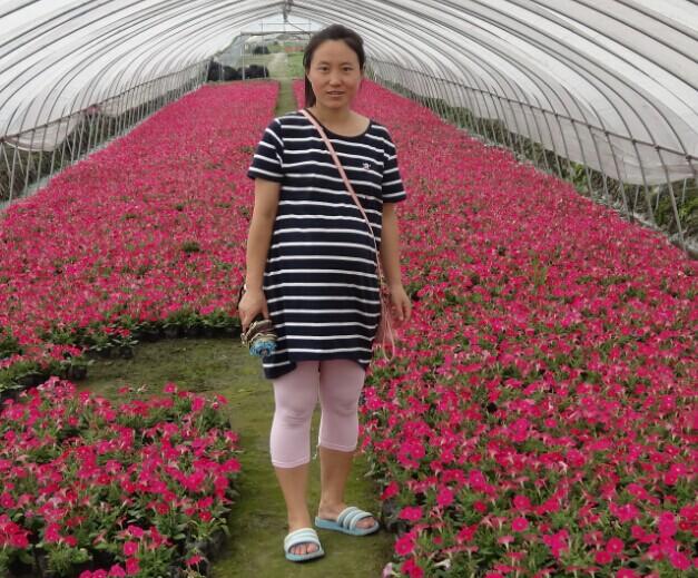 杭州萧山雪梅花草园