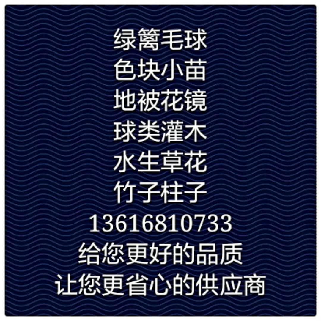 杭州萧山浙融园艺场
