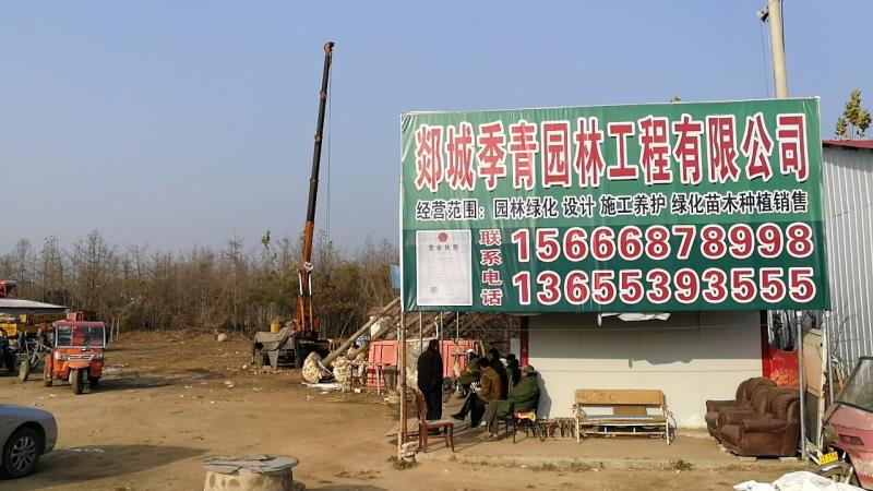 郯城季青园林工程有限公司