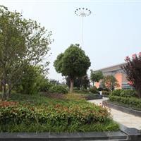 河南九鼎园林绿化工程有限公司