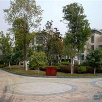 武汉中景园林环境艺术有限责任公司