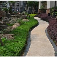 福建绿艺园林景观工程有限公司
