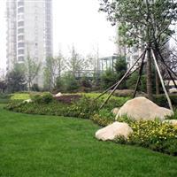 青岛新艺林市政园林集团有限公司