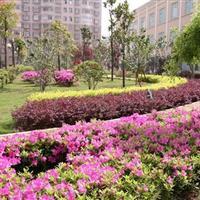 江苏恒绿建设工程有限公司