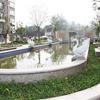 沧州市滨河龙韵小区