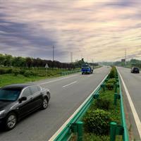 巢宁路护坡绿化工程