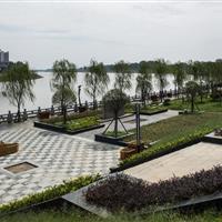 武汉滠水河生态综合整治