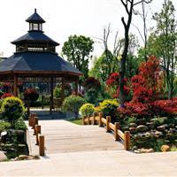 句容·崇明公园