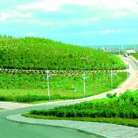乌兰察布市集宁区白泉山主题公园建设项目