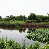 古庄农业生态园