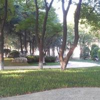 丹阳市人民公园