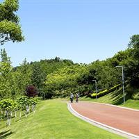 自贡釜溪河复合绿道