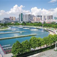东莞中心广场南片区绿化