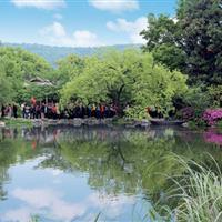 杭州西湖•花港公园