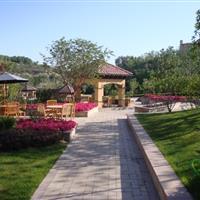 新疆绿城•玫瑰园