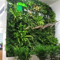 健康岛·铁汉生态立体绿化项目