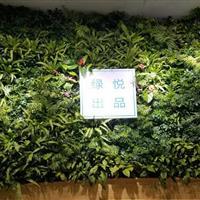健康岛·绿悦立体绿化项目