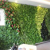健康岛·大宏集团立体绿化项目